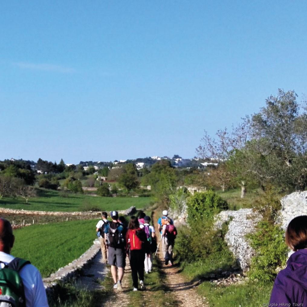 Wandern nach Locorotondo, Italien